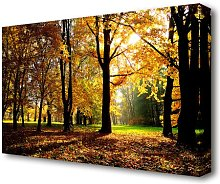 Autumn Season Forest Canvas Print Wall Art East