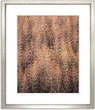 Autumnal Pattern Framed Print & Mount, 97 x 82cm,