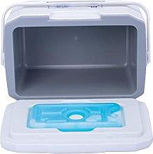 AWSA Cool Box, 6L Mini Outdoor Cooler Box