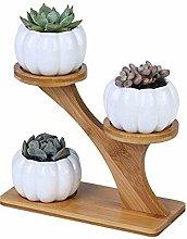 AYHa Ceramic Small Pumpkin Ceramic Pot 3 Tier