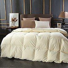 B/H Winter Warm Ultra Snuggle Duvet,Home cotton