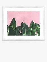 Banana Leaves - Framed Print & Mount, 46 x 56cm,