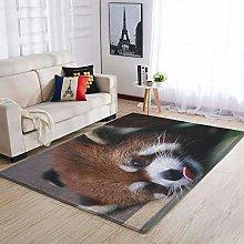 Banniyouall Animal Red Panda Vintage Indoor Area