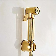 Bathroom Golden Shower kit with ABS Bracket and 1