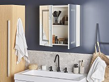 Bathroom Mirror Cabinet with LED White 60 x 60 cm