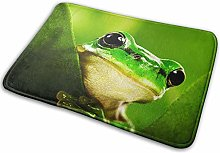 Bathroom Rugs Bath Mat Funny Green Frog, 16x24