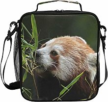 Bears Red Panda Animal Lunch Bag Insulated Lunch
