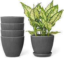 Bearsu - 6 Inch Plastic Planters with Saucers