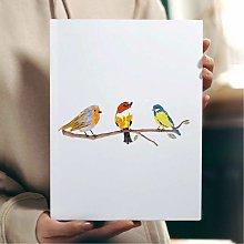Beautiful Birds Wall Art Print | Gift for Friends