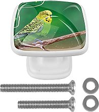 Beautiful Budgie On The Tree Branch Drawer knobs