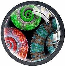 Beautiful Color Chameleon Tails Cabinet Door Knobs