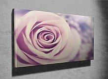 Beautiful Fresh Violet Rose Photo Canvas Print