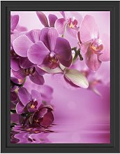Beautiful Orchid Blossoms Framed Photographic