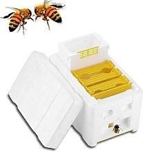 Beekeeping Tools Bee Coupling Box Foam Box