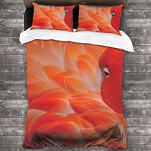 BEITUOLA Duvet Cover Set,Flamingo Feathers Fuzzy