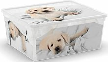 Belday Toy Box Ebern Designs