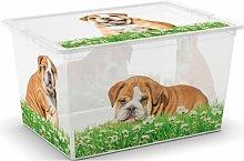 Belmore Toy Box Ebern Designs