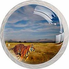 Bengal Tiger in Natural Habitat 4 Packs Kitchen