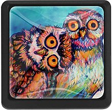 Bennigiry Dumb Owls Square Crystal Glass Cabinet