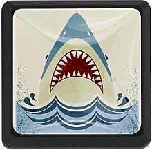 BennigiryOcean Great White Shark Square Crystal