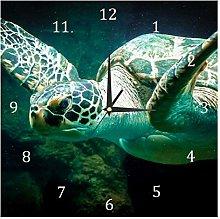 BestIdeas Sea Turtle Marine Animal Underwater