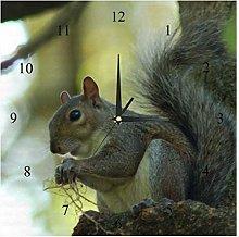 BestIdeas Wall Clocks Grey Squirrel Battery