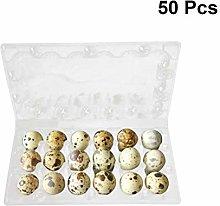 BESTONZON 50pcs Quail Egg Holder Egg Dispenser