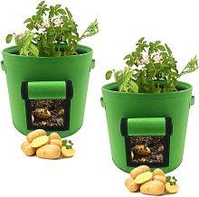 Betterlifegb - Garden vegetable plants with