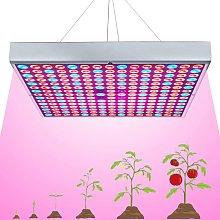 Betterlifegb - Plant Lighting, Plant Growth Light,