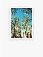 Beverly Hills Palms - Framed Print & Mount, 76 x