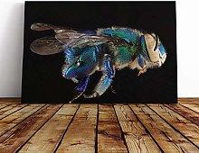Big Box Art Canvas Print Wall Art Blue Orchid Bee