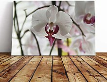 Big Box Art Canvas Print Wall Art White Orchid