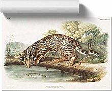 Big Box Art Leopard-Cat by J.W. Audubon, Wall Art