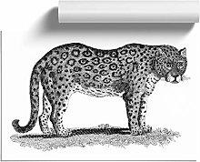 Big Box Art Leopard George Shaw, Wall Art Poster