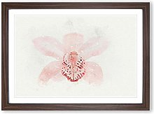 Big Box Art Light Pink Boat Orchid in Abstract