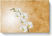 Big Box Art Orchid Flowers Painting Canvas Wall