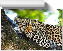 Big Box Art Poster Print Wall Art Leopard 5 | Home