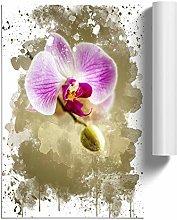 Big Box Art Poster Print Wall Art Pink Orchid