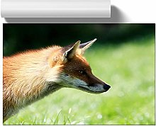 Big Box Art Poster Print Wall Art Red Fox (1) |