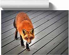 Big Box Art Poster Print Wall Art Red Fox | Home
