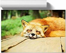 Big Box Art Poster Print Wall Art Sleeping Fox |