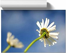 Big Box Art Poster Print Wall Art White Flowers