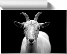 Big Box Art Poster Print Wall Art White Goat |