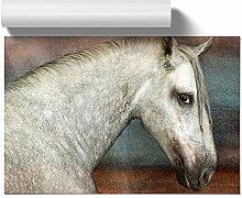 Big Box Art Poster Print Wall Art White Horse |