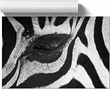 Big Box Art Poster Print Wall Art Zebra Eye | Home