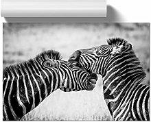 Big Box Art Poster Print Wall Art Zebra Wildlife |