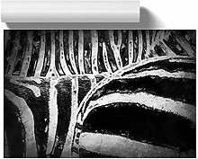 Big Box Art The Stripes of The Zebra in Abstract,