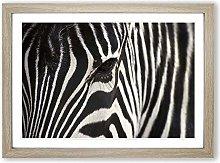 Big Box Art Zebra (4) Framed Wall Art Picture