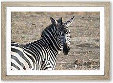 Big Box Art Zebra Framed Wall Art Picture Print