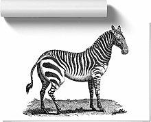 Big Box Art Zebra George Shaw, Wall Art Poster